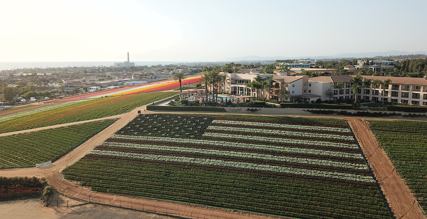 Prime Location Above Famous Carlsbad Flower Fields